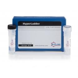 HyperLadder 100 bp